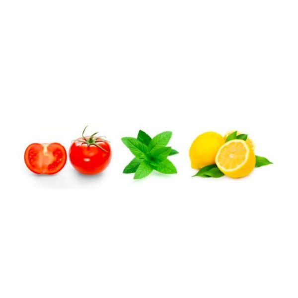 Tomato, basil, lemon in a line
